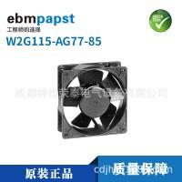 ebm-papstW2G115-AG77-85